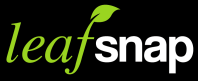 Leaf Snap App